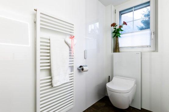 Badezimmer Umbau mit Dusch-WC